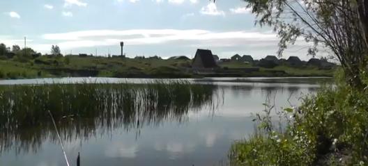 Пруд в Молсовхозе (Берёзовке)