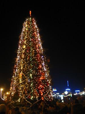 новогоднее оформление Новоалтайска