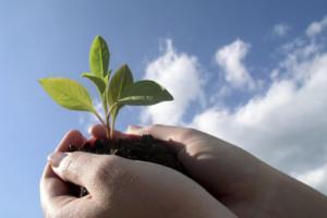 экология конкурс грантов охрана окружающей среды