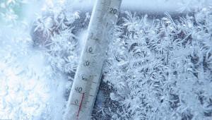 сильный мороз заморозки метель