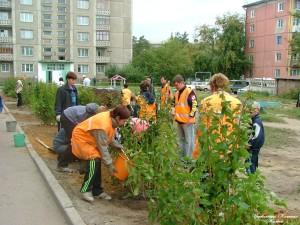 озеленение высадка деревьев Новоалтайск