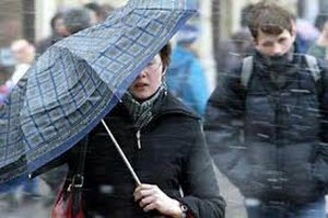 Алтайские синоптики объявили штормовое предупреждение