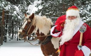 Барнаульский парк «Лесная сказка» готовится отметить День рождения Деда Мороза