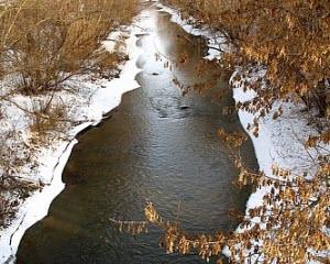 Чесноковка и Черемшанки вошли в число реабилитируемых водных объектов
