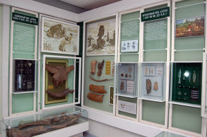 Новоалтайский краеведческий музей подготовил выставку к 100-летию своего основателя