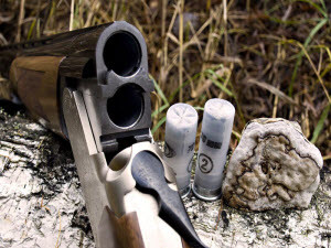 Полиция Тальменского района возбудила уголовное дело за незаконный отстрел кабанов