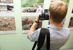 Сегодня в ГМИЛИКА наградят победителей международного фотоконкурса «Живая природа Алтая»
