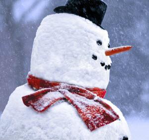 В Новоалтайске подвели итоги конкурса снежных фигур