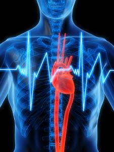 Алтайский край вошел в число регионов, где разработаны лучшие методики борьбы с сердечно-сосудистыми заболеваниями