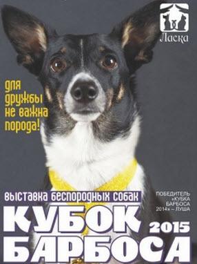 В Барнауле пройдет выставка беспородных собак